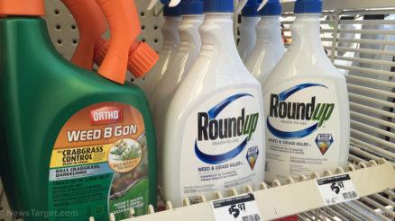 Weed-B-Gon-RoundUp-Spray-Bottles