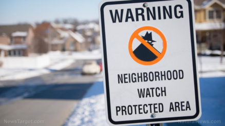 Neighborhood-Watch-Sign-Snowy-Midwest-Suburb