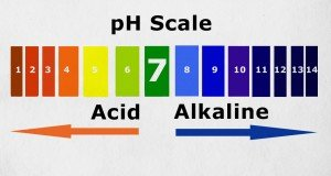 Your pH Levels & Cancer Risk | Natural Health 365